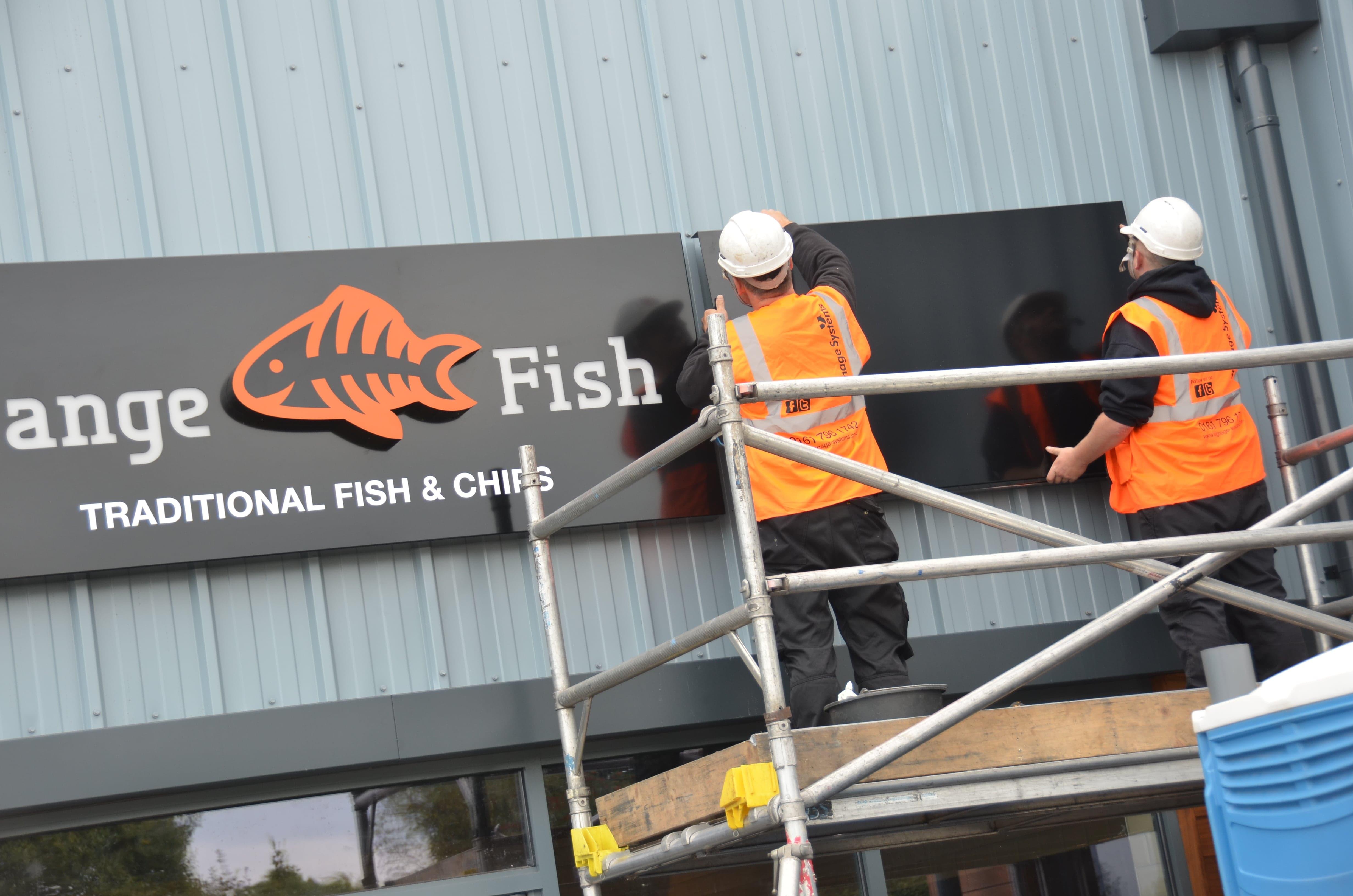 orange Fish Installation